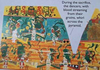 maya-4-100_08871