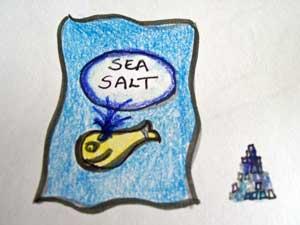 salt-1-100_1254-copy