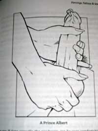 guide-3-100_1527-copy